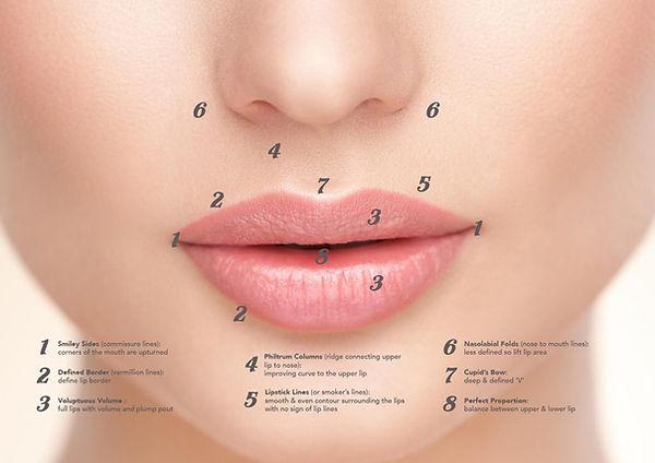 lip-enhancements-diagramW-1024x724.jpg