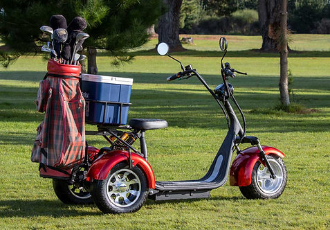 Trike Golf/Fishing Electric Scooter