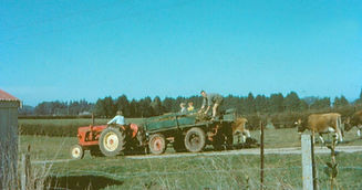 Old photo of tractor