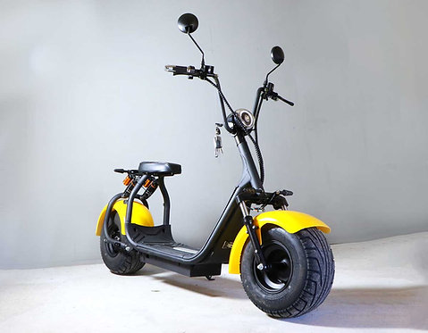 Leisure Electric Scooter