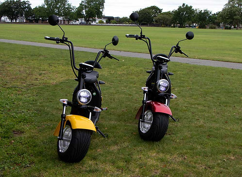 Cruiser Electric Scooter