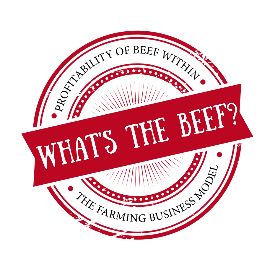 What's The Beef_ (1).png