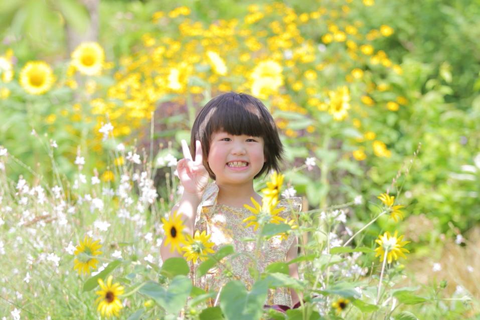 お花畑で撮影 滋賀お花畑