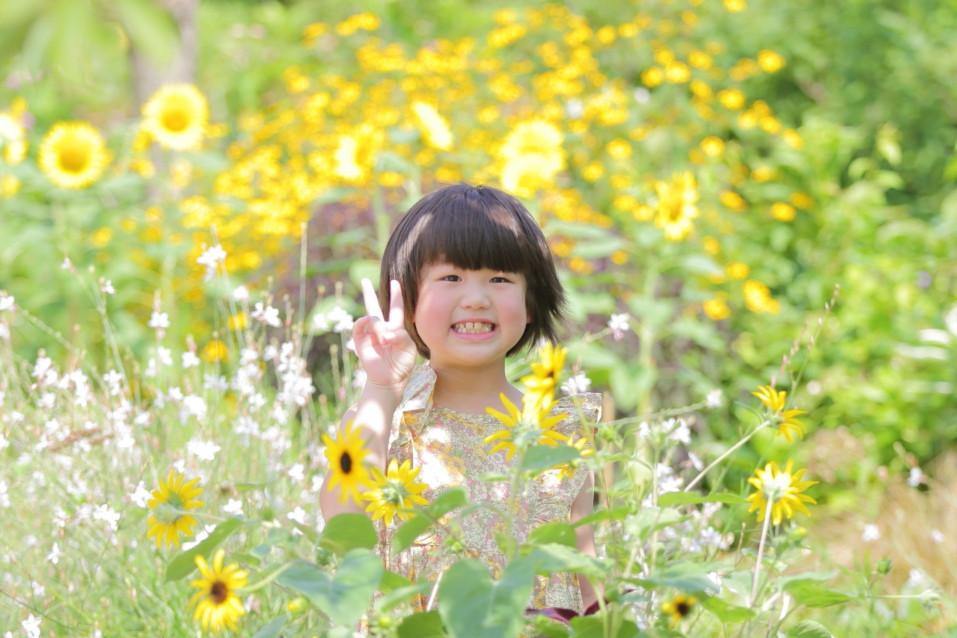 ひまわりと女の子 夏 ロケーション撮影滋賀