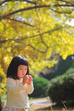 自然撮影 京都カメラマン撮影 出張撮影あおぞら 出張撮影えびす