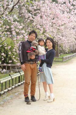 家族写真 桜 記念写真 ロケ 自然撮影