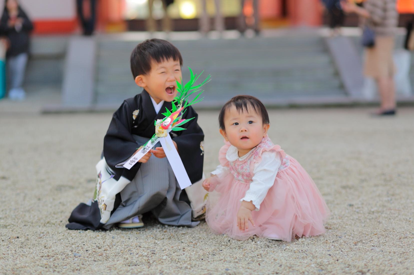 七五三詣り出張撮影 カメラマン撮影 京都出張撮影 同行撮影 あおぞら撮影