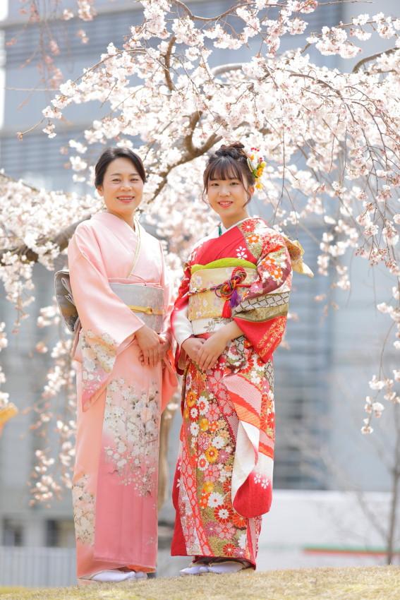 桜と和装 サクラ 着物出張撮影 滋賀フォトグラファー
