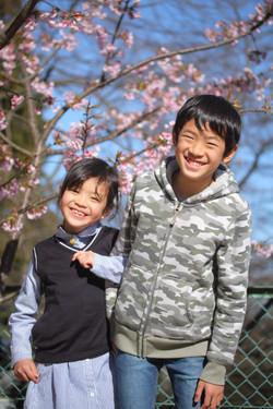 家族写真 兄妹 出張撮影 大津撮影 桜と写真 春のおでかけ