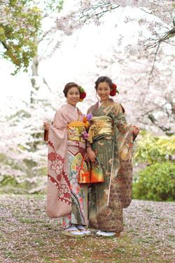 成人式 着物 桜 出張撮影 ロケ 記念撮影