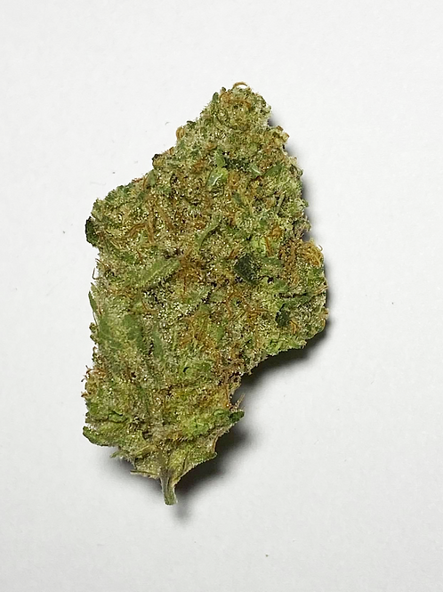 $65 I SUGAR PINE #21 (Indoor) I FLORACAL I THC 27.428% I SATIVA DOMINANT