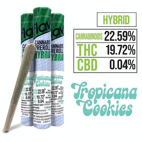 $15 I TROPICANA COOKIES PREROLL [ FLAV I THC 22.59% I HYBRID