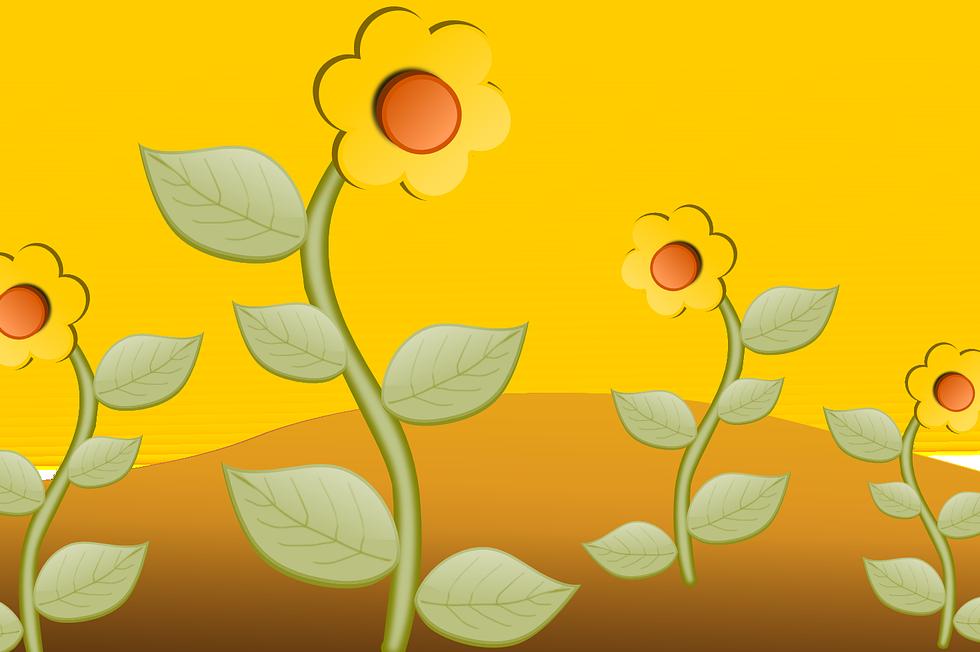 sunflower-field-150870_1280.png