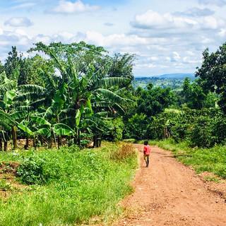 Mityana, Uganda - Apr-Jul, 2019