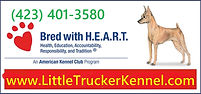 HEART bus card.jpg