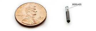Microchip-and-Penny.png