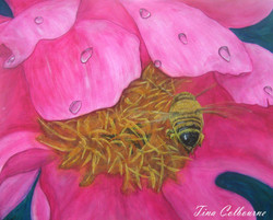 """""""Bee in a Peony"""""""