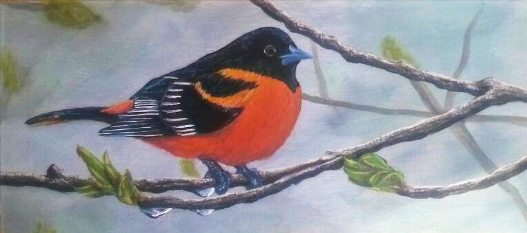 """Oriole on Branch"""
