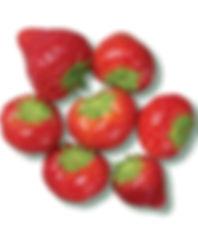 PL strawberries_on_white.jpg