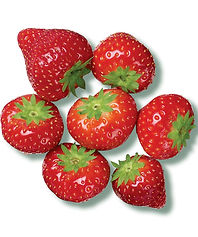 PL strawberries_on_white.jpg