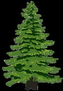 FreeVector-Trees-Vectors.png