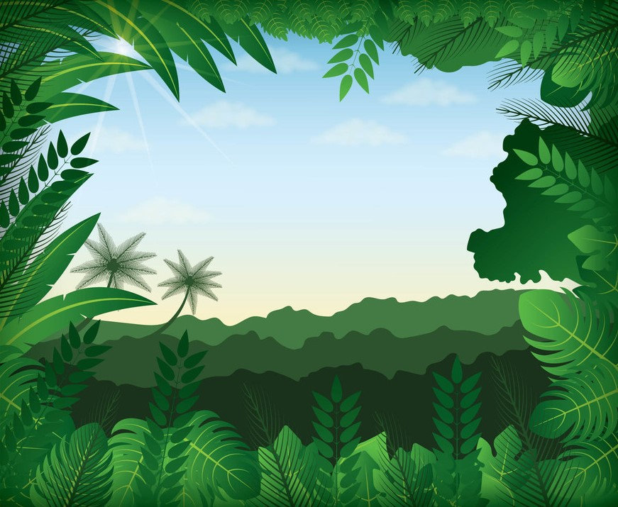 FOREST_BACKGROUND_1.jpg