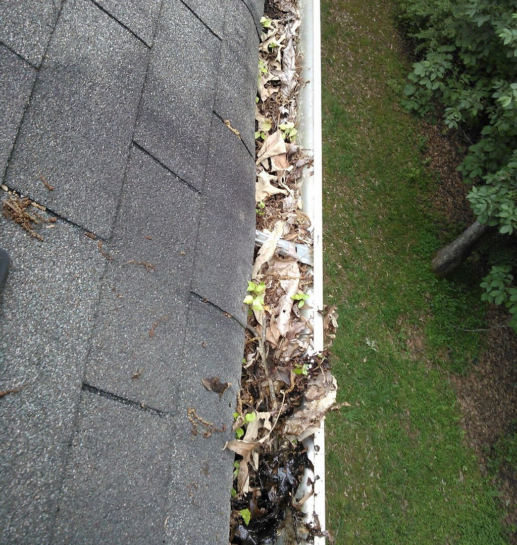 Gutter Cleaning and Installation in Reisterstown