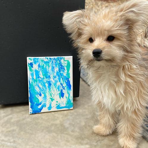 Pet Painting Kit