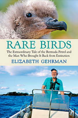 Rare Birds excerpt
