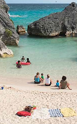 Best of Bermuda