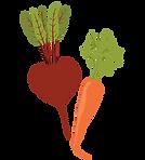Beet & Carrot 2019.png