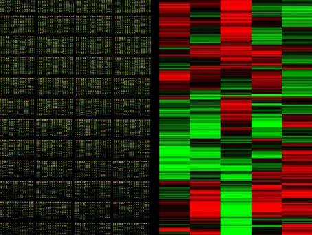 Mikroarray Analizi Hakkında Herşey