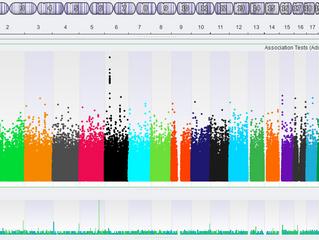 Genom Boyu İlişkilendirme Çalışmaları (GWAS)