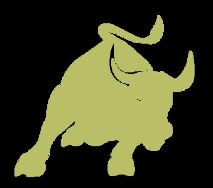 Taurus Freigh Inc. Bull