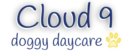 Cloud 9 quick logo-01.png