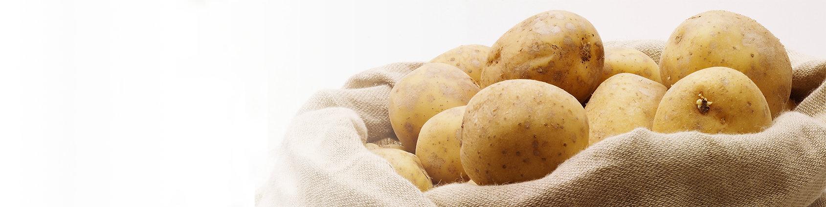 Curry & Company Oregon Potatoes