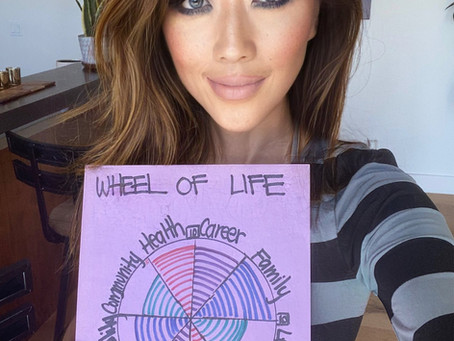 Wheel of Life: A Simple Yet Powerful Visualization Tool