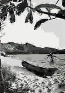 Brel et l'île-chant