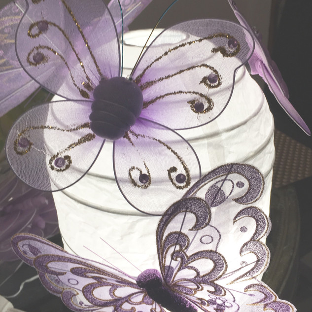 Butterfly Stage Prop