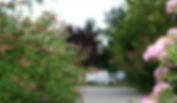 Landscape_robinlham.JPG