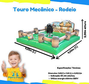 Aluguel Touro Mecanico
