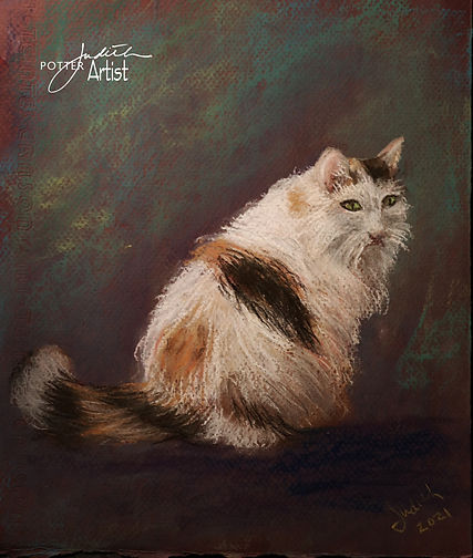 9 Cyndis Cat.jpg