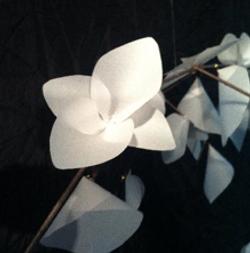 Fleur de papier