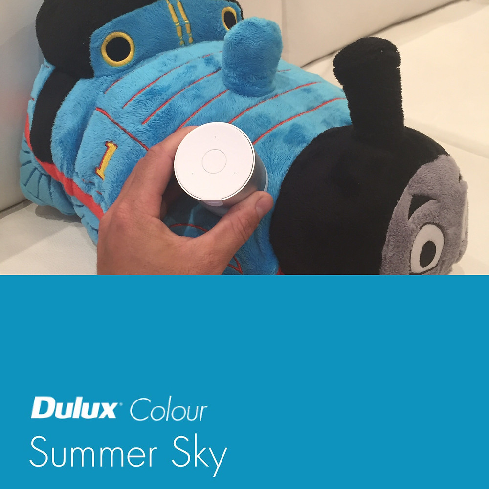 dulux snapshot taking a sample in newcastle nsw