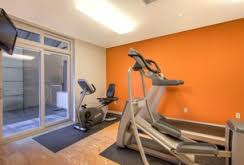 gym orange feature in newcastle painting