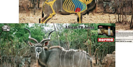 Mixed Targets - Kudu, Impala, Springbok, Warthog, Wildebeest (5-Pack)