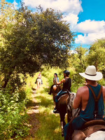 Trail Ride 3.jpg
