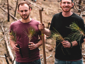 Robin und Nicholas von NIKIN: Ein Modelabel pflanzt Bäume