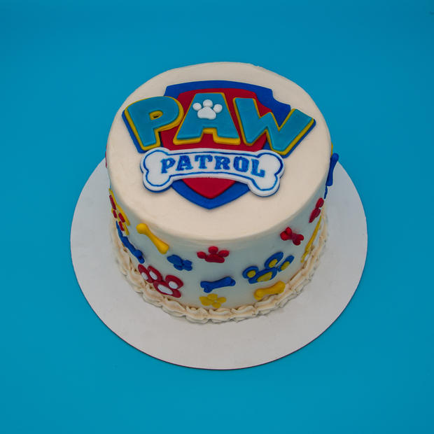 Paw Patrol-1.jpg