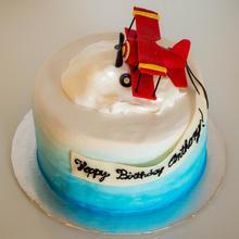 Bi plane Cake